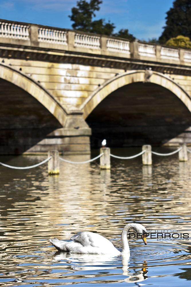 London Hyde tirage d'art