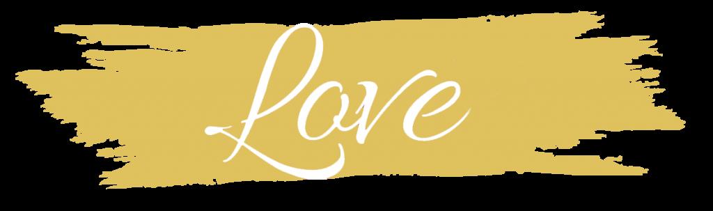 photographe de mariage logo