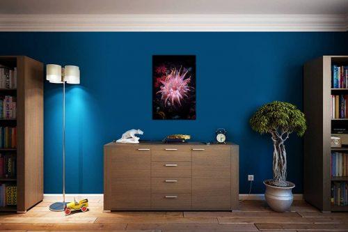 Anemone decor de style cosy