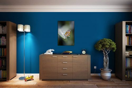 Butterfly 2 decor de style cosy