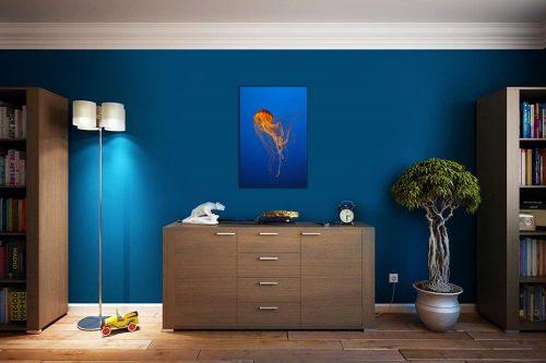 Jellyfish decor de style cosy