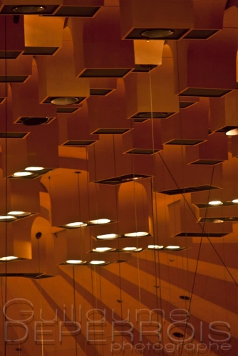 Lights Sydney